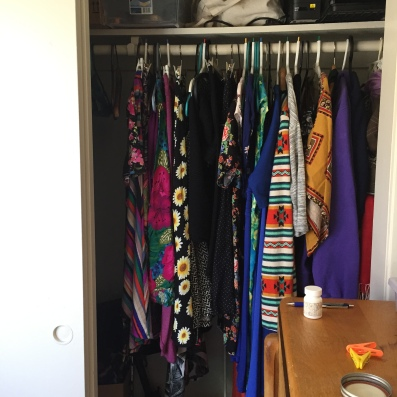Beautiful dress section of now-clean closet